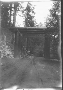 2-24900-mt-rainier-1908