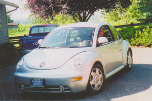 I bought this Bug new in 1998.  TDI never got less than 48 MPG, could cruise 85-90 all day.