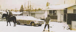 Poor picture of our new 1966 Chevy Caprice wagon. ONe of the rare snows in Seattle, it lasted 3 days. The boys loved it and their horse did too. We have had horses for over 40 years. We still have two, just feed and love them.